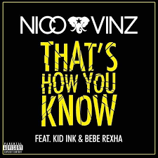 recension-Nico Vinz That's how you know