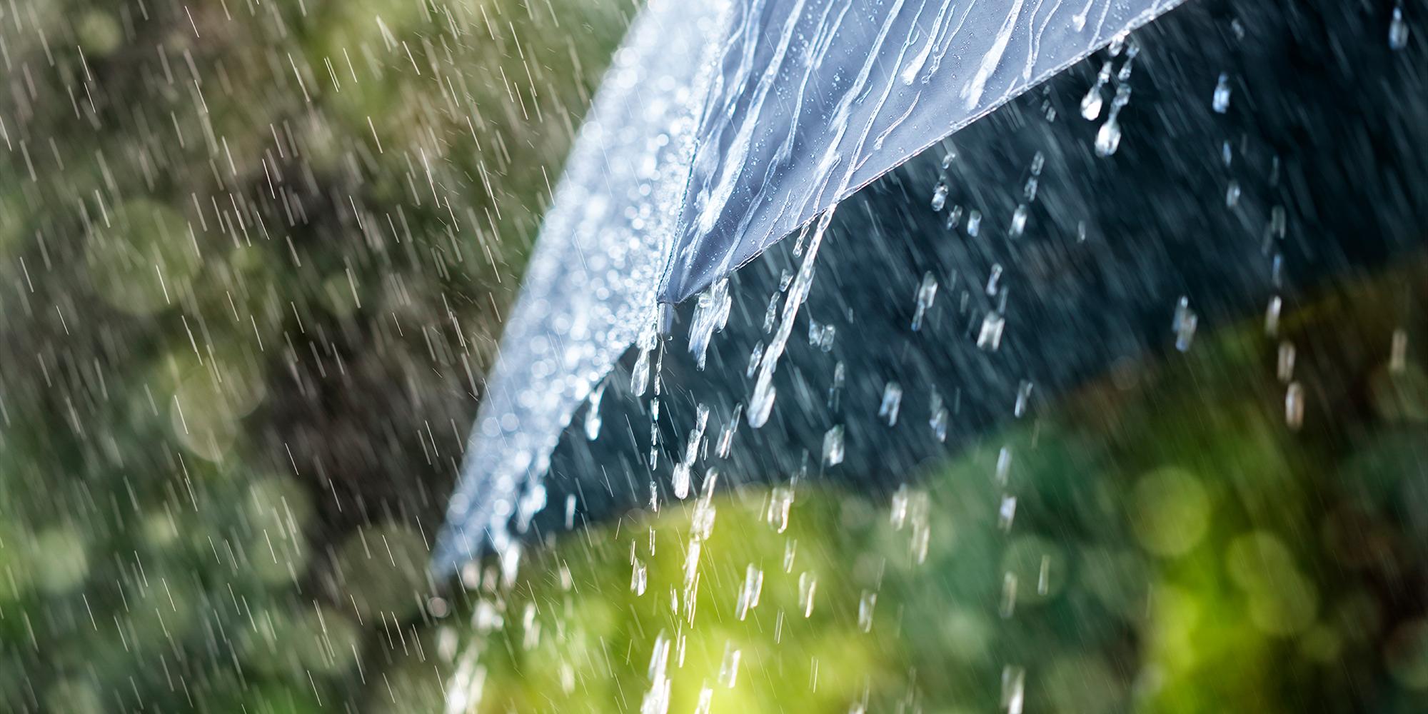 Svar pa allt om regn