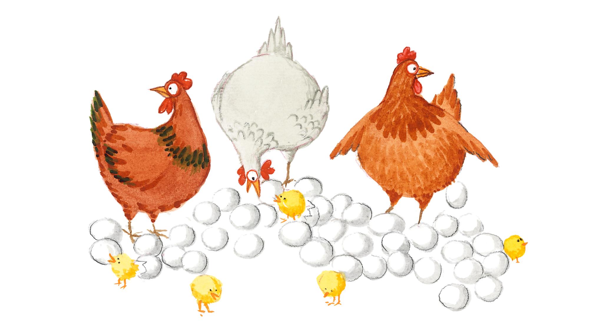 Hönor och ägg