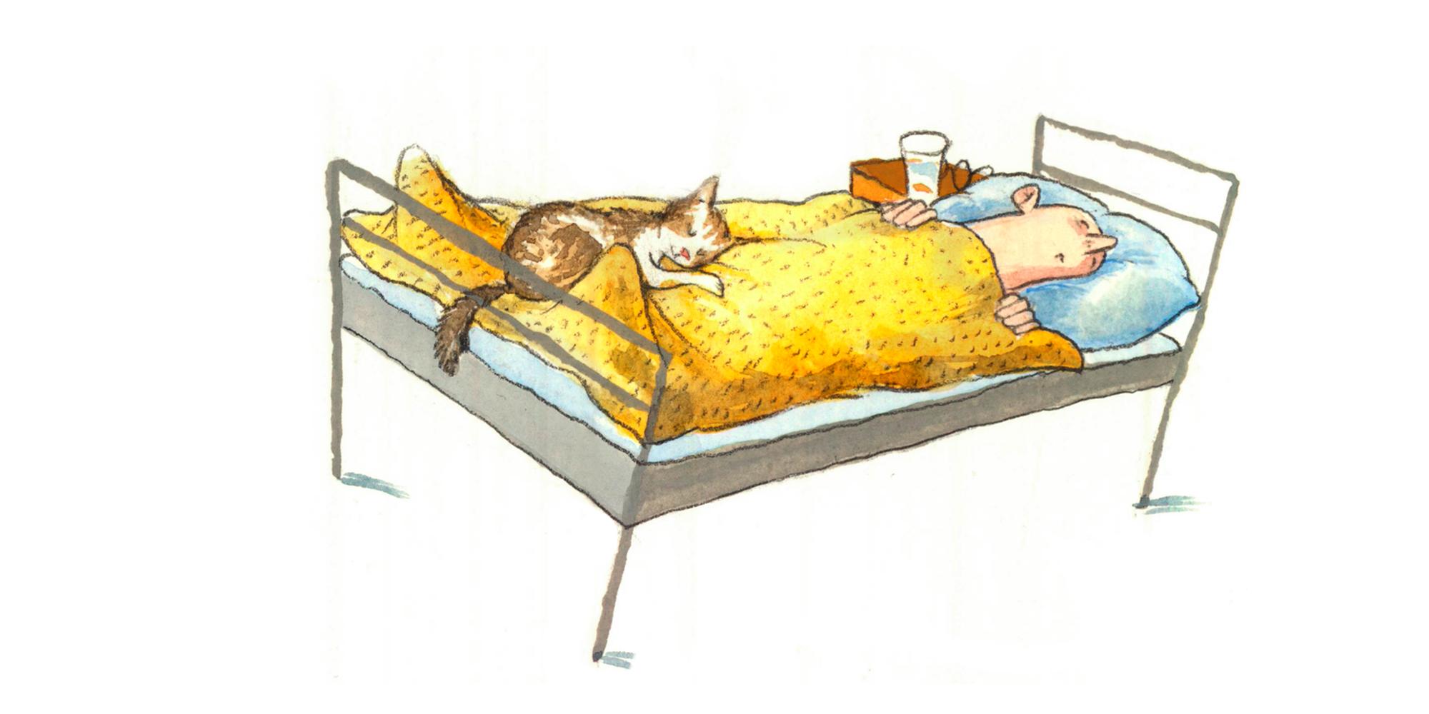 Fakta_190906_Kanda-katter_Oscar