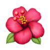 Noje_210105_Spa-med-emojier2021_VAXTER_